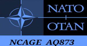 NATO balistica forense  Esplosivista Italia