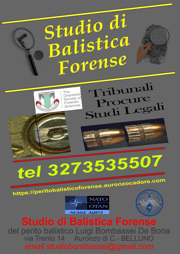 Scelta perito balistico Roma Milano Venezia Padova Bologna Torino genova Rimini Sondrio Verona Vicenza Ancona Bari Napoli Firense